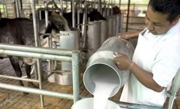 Tamberos repudian la baja de precio de la leche por la industria
