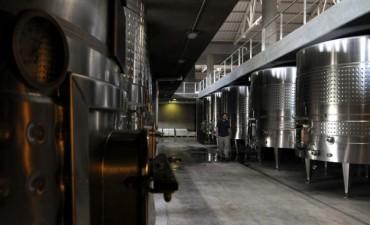 La Nación destina $ 75 millones para bajar sobrestock de vino
