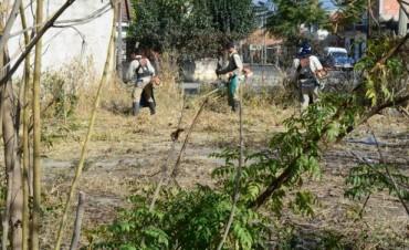 Se limpian y desmalezan plazas y plazoletas de seis barrios de la ciudad