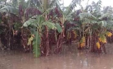 Formosa: Piden la declaración de emergencia por inundaciones