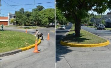 La Municipalidad recupera platabandas y rotondas del barrio Grand Bourg