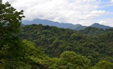 El Gobierno suspendió la ejecución de los cambios de uso de suelos que fueron observados