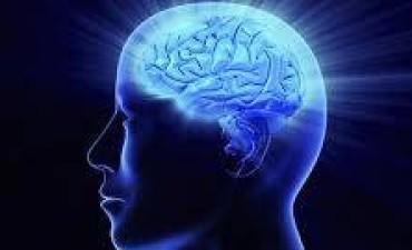 Día mundial del cerebro: qué es y cómo detectar un ACV