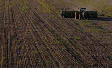 La demora del agro estanca las exportaciones