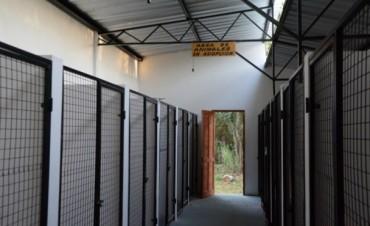 Inaugura un nuevo espacio para albergar a perros abandonados