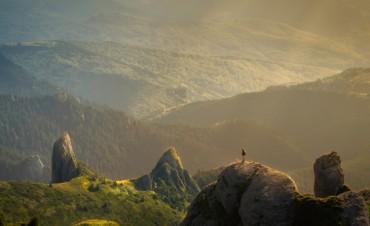 Intangibilidad del medio ambiente: Querer no es poder