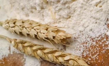 Brasil:Los molinos importaron 38.000 tns. de harina de trigo de la Argentina durante septiembre