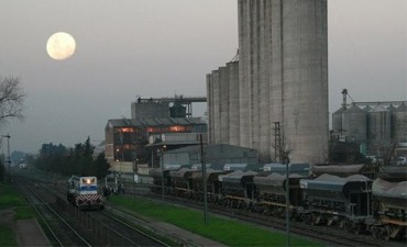 Las exportaciones argentinas de harina de trigo crecieron 32% para generar un ingreso adicional de casi 30 M/u$s