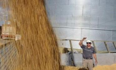 Recibidores de granos comenzarán este miércoles un paro nacional