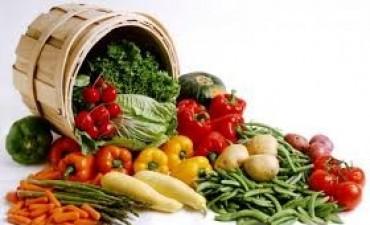 Estos son los alimentos que refuerzan tus defensas