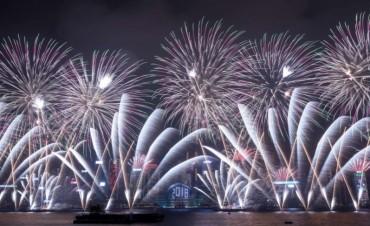 El nuevo año es recibido en el mundo