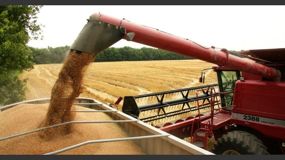 La Bolsa de Cereales redujo estimación de cosecha de soja a 44 millones de toneladas