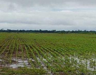 Seguirán las lluvias en el norte de la zona pampeana