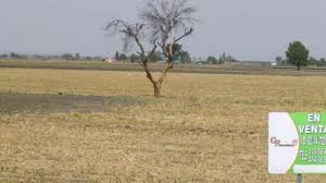 El Gobierno pone a la venta 15.516 hectáreas del Ejército
