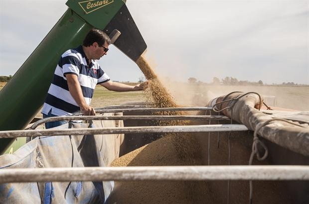 Brasil va salir de la recesión sostendo por la cosecha récord de soja