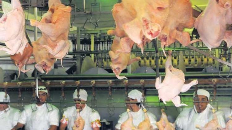 El pollo repunto y mermo el consumo de carne vacuna