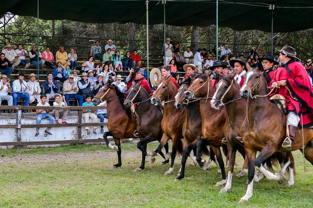 Concurso Nacional de Caballos Peruanos de Paso