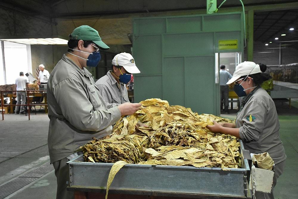 Salta entre las diez provincias con sueldos más bajos del País