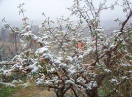 """Tafí del Valle: """"no había nevado así en 35 años"""""""