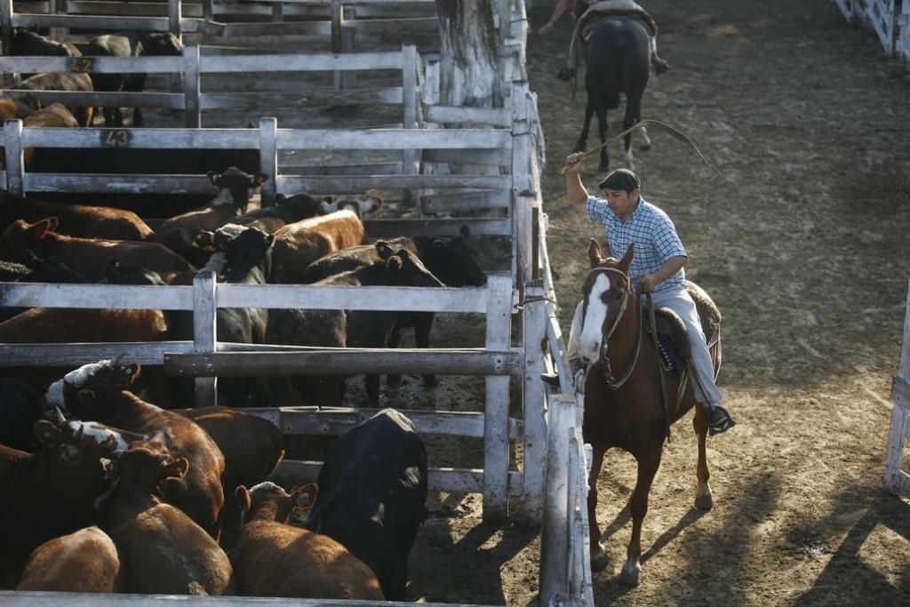 Liniers cerro la primera jornada con precios en baja