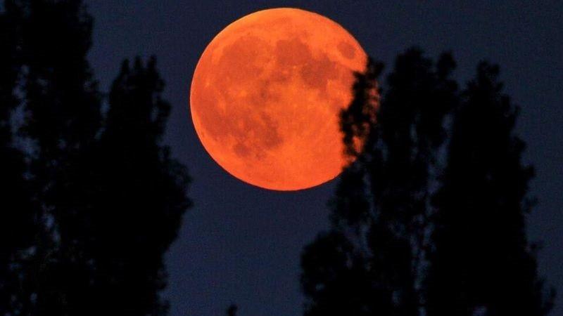 Superluna de flores y Luna de Sangre