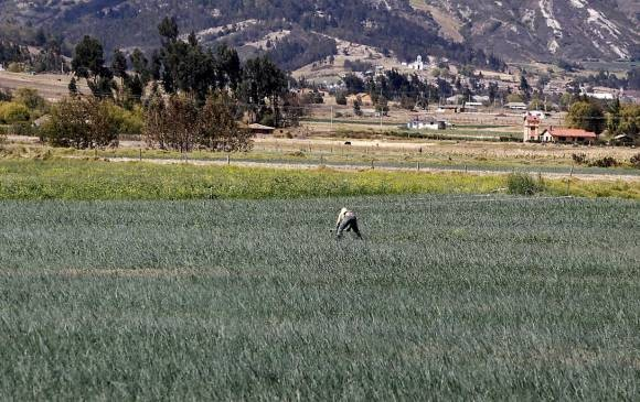 Desde el campo alertan ante un posible cambio de categoria de Agroindustria