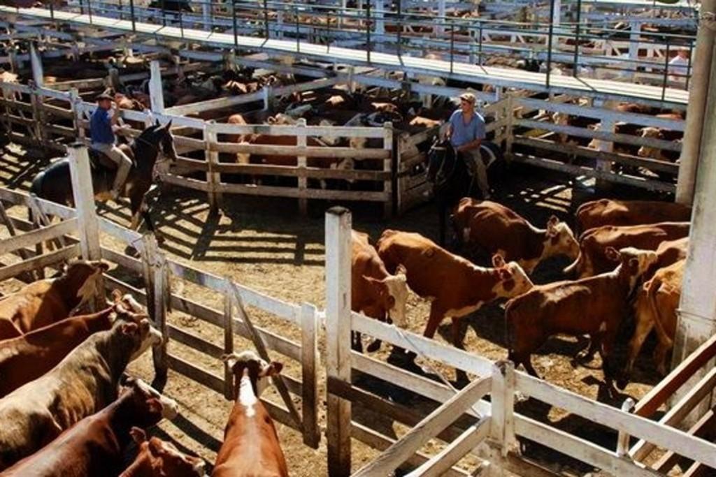 El Mercado de Liniers vendió 5933 vacunos en baja