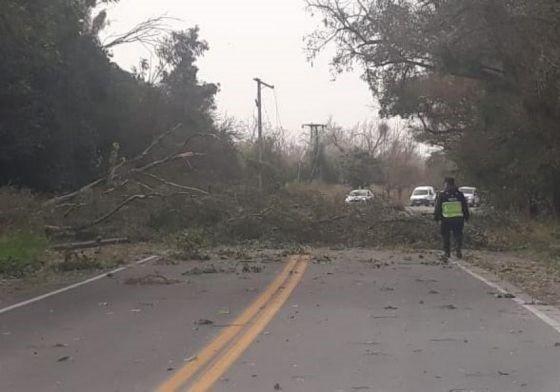 El Gobierno asistió a distintas zonas afectadas por fuertes ráfagas de viento zonda