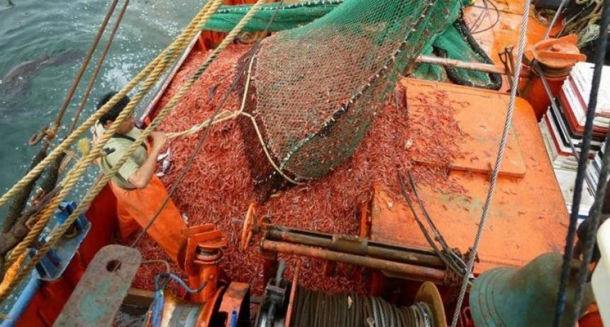 El paro sindical ponen en riesgo la temporada de pesca del langostino