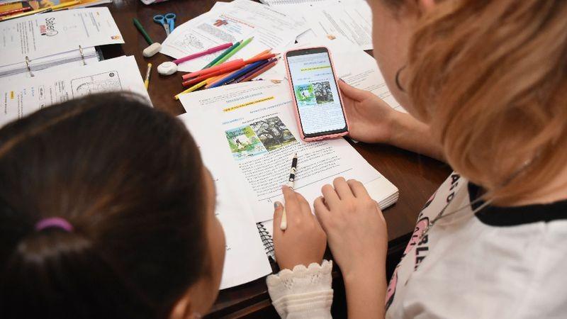 Advierten que hay una saturación ante la enseñanza remota en muchos chicos