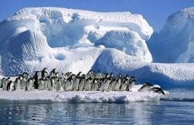 10º aniversario de la Secretaría Permanente del Tratado Antártico