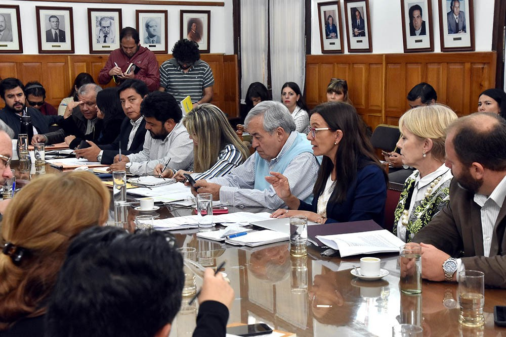 Berruezo expuso en Diputados