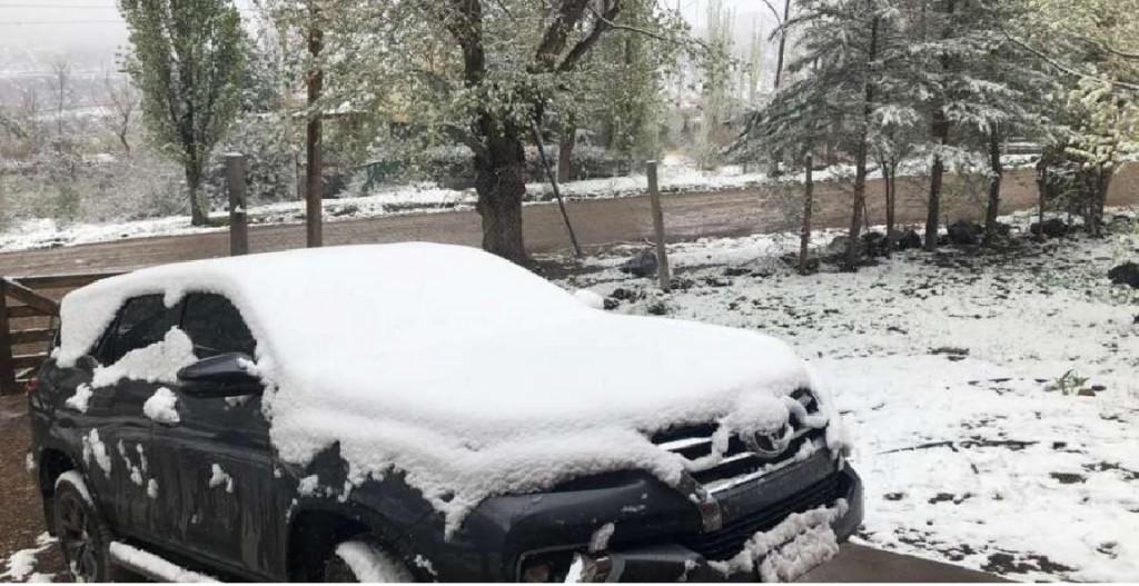 Potrererillos sorprendido por la nieve en primavera