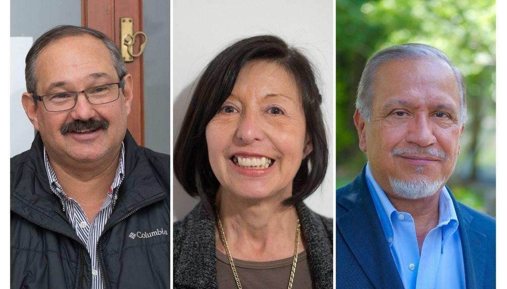 Leavy, Giménez y Romero, los senadores nacionales por Salta