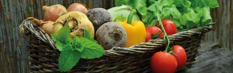 Alarga la vida de tus frutas y verduras
