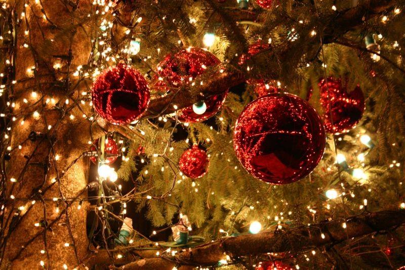 ¿Quién ha dicho que en navidades tengamos que ser felices?