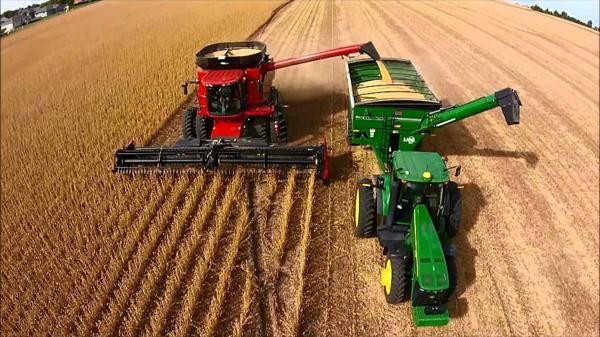 El trigo con un muy buen Rindes récord ¿Cuáles son las claves de la campaña?