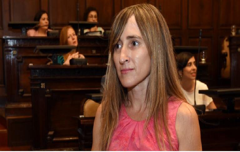 Diputada  de Mendoza propuso bajar el 30% del salario de los legisladores
