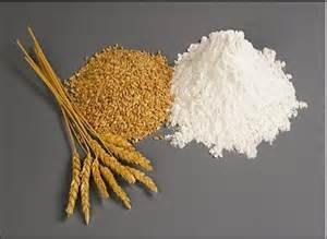 Las exportaciones de trigo prevè US$ 2.819 millones